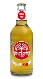 Ace Pumpkin Cider Bevmo by 88 Best Hard Cider World Images On Pinterest Tags Beer And