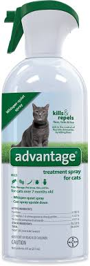 flea treatment for cats advantage ii flea treatment spray for cats 8 oz bottle chewy