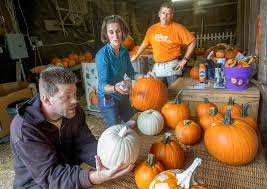 Pumpkin Patch College Station 2014 by Owners Find A Charitable Thrill Each October On Pumpkin Hill The