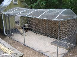 How High Should My Chicken Run Fence Be | BackYard Chickens Dogfriendly Back Yard Dogscaped Yards Pinterest Dog Superior Fence Cstruction And Repair Kennels Roseville Ca Domestically Dobson Run Fun Better Than A Ideas For Your Fourlegged Family Backyard Kennel Side Our House Projects Yards Artificial Turf Runs Pet Synthetic Of Illinois Youtube How To Build A Guide Install Image Detail Black Backyards Awesome 25 Best About Outdoor On