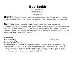 Cute Object Of Resume Examples With Personal Career Objectives In Job