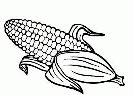 New Corn Coloring Page Fruits Corn Coloring Pages