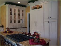 Stand Alone Pantry Cabinet Plans by Unfinished Oak Pantry Cabinet 24 Wide Home Design Ideas