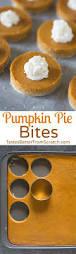 Betty Crocker Pumpkin Slab Pie by Best 25 Mini Pumpkin Pies Ideas On Pinterest Pumpkin Pies