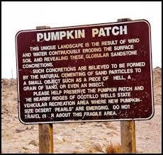Pinery Bonita Pumpkin Patch by The 25 Best Pumpkin Patch San Diego Ideas On Pinterest Ca State