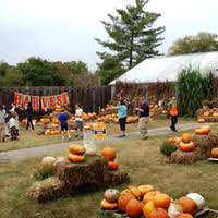 Pumpkin Patch Nashville Area by Fall Festivals Happening In Nashville Tn Including Craft