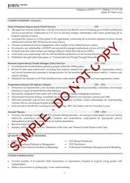 Rhcom Samples Program U Finance Manager Fpua Devops Samplerhelitewritingcom Resume Examples For Sales Directors