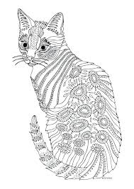 Kittens Coloring Pages For Adults And Butterflies Book By Kitten Colouring
