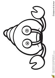 Coloriage Ermite De Crabe With Coloriage 12 Ans A Imprimer élégant