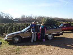 Griswold Christmas Tree Scene by In Search Of The Perfect Christmas Tree