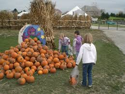 Pumpkin Patch Petting Zoo Illinois by Goebbert U0027s Pumpkin Patch Guided Tours