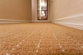 eastern carpet cleaning