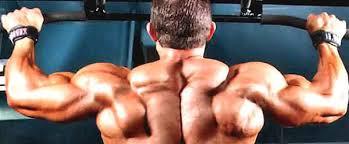 barre de traction pour une musculation à la maison