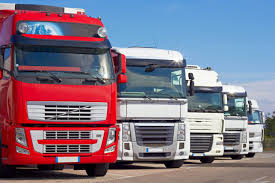 100 Royal Trucking Company No Sympathy For Lawbreaking Truckies Caught Up In NZ Transport