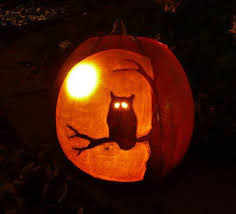 Owl Pumpkin Template by Beautiful Owl Pumpkin Design 80 Skiparty Wallpaper