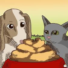 Pumpkin For Pets Diarrhea by 8 Reasons Why You U0027ll Want To Feed Your Pet Pumpkin Today