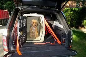 Amazing Truck Bed Dog Crate For Dee Zee Dual Box | Notesmela Pickup ... Dog Hauler Cstruction Completed Sp Kennel Porta Two Box For Large Trucks Pickup Truck Transportation With Top Storage Buy Highway Products Gun This Box Offers A Secure My New Dog The American Beagler Forum Like From Ft Michigan Sportsman Online Small Boxes Sale Better Ideas For Custom Alinum Evans Jones Mi 49061 Gtaburnouts Radiant Red Ccsb Trd Or Jeeps Mods And Vehicle Hunting Pinterest Dogs Rig Picturestrucks 4wheelers Etc Biggahoundsmencom Fs Gon