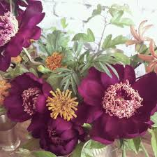 105 best Ariel Dearie Flowers images on Pinterest