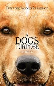 Libbys 100 Pure Pumpkin For Dogs by A Dog U0027s Purpose In Theaters January 27 January 27 And Films