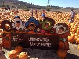 Pumpkin Patch Pasadena Area by Pumpkin Patches And Harvest Festivals In Los Angeles Trekaroo