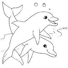 Coloring Pages Printable Simple Concept For 12 Year Olds Dolphin Inspiration Line Pattern Picture Cute