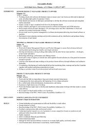 100 Agile Resume Product Owner Examples Free Professional