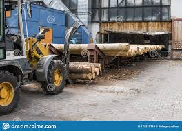 Forklift Truck Grabs Wood In A Wood Processing Plant. Large Log ... 1988 Intertional 9300 Sfa Dump Truck Item E5704 Sold 2017 Superior Pugmill F3609 For Sale Billings Mt 9455771 3d Milling With Trimble Equipment On A Wirtgen Mill Gps Machine Gmc Cckw 353 Log Truck Thurechts Redcliffe Photo 2001 Ford F550 Xlt Super Duty Service D3505 S Jared Mills Senior Treasury Manager Waste Management Linkedin The Key Of Conical Ball Is Improved In Process Is Loaded Sugar Cane Harvest At Cerradinho S And Sunbelt Rentals Inc Fort Sc Rays Photos Big Day Orland Free Library 4billy Goat Promotions Us Dotter Hall 1981 Freightliner Flc Bv9212 Novem