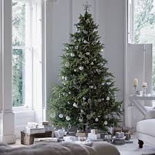 Aldi Pre Lit Christmas Tree Review Full Willow Pine Artificial Clear