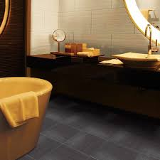 Lenova Sinks Ss La 01 by Flooring Enchanting Daltile For Cozy Wall And Floor Design