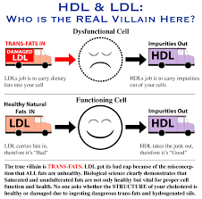 hdl cholesterol range normal herbs that lower cholesterol