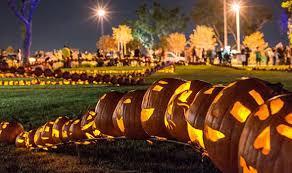 Largest Pumpkin Ever Carved by Guinness World Records 10 Wacky Halloween Achievements Weird