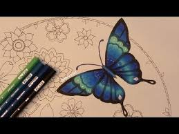 How I Color A Butterfly