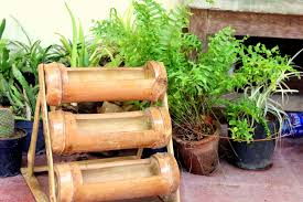 planting bamboo in a pot bamboo planters spaces