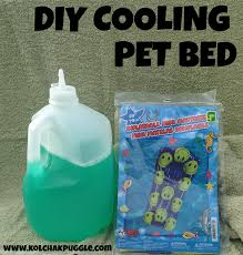 Chewproof Dog Bed by Diy Cooling Dog Bed Pet Beds Wordpress And Dog