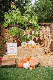 Pumpkin Patch College Station 2014 by Little Pumpkin
