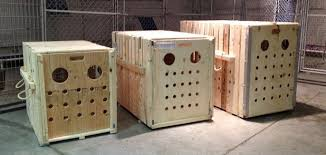 Custom Crates Pet Dog Great Dane Pit