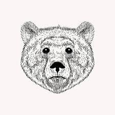 Drawn Grizzly Bear California Flag