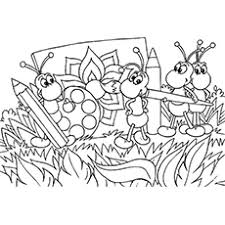 Ant Bug Coloring Pages