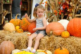 Pumpkin Patches In Milton Wv west virginia pumpkin festival vendors keep tradition growing