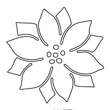 Picture Of A Poinsettia