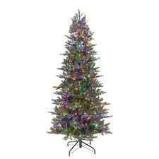Steins Christmas Trees