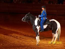 Discount Tickets For Dixie Stampede : Adventure Kids Books Whoadeo At Dixie Stampede Oct 1 Dolly Partons Coupons And Discount Tickets Online Coupon Code For Stampede Dollywood Uniqlo Promo Code Reddit 2019 Bonanza Com Coupons Branson Mo Sports Addition In Christmas Comes To Life This Christmas At Family Tradition Pionforge Soufeel Discount August 2018 Sale Free Childrens Whoadeo At Dolly Partons Stampede Sept Personal Book Gift Natasha Salon Deals