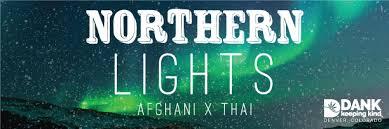 Northern Lights DANK Dispensary