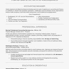 Free Professional Resume Example