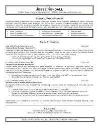 Account Manager Resume Sample This Is Executive Sales Format