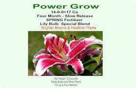 four month bulb fertilizer flower store