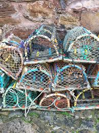 Decorative Lobster Trap Uk by Crail Harbour Lobster Pots Boating Ocean And Scotland