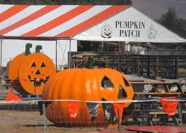 Pumpkin Patch San Jose 2015 by The Top 10 Things To Do Near Blossom Hill Station San Jose