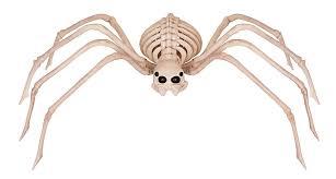 Preschool Halloween Spider Books by Amazon Com Crazy Bonez Skeleton Spider Toys U0026 Games