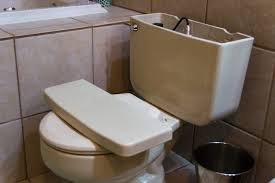 Clogged Toilet Drain Home Remedy by How To Use Liquid Plumber On Clogged Toilet Hunker
